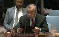 PSSP Tanin në sesionin e Këshillit të Sigurimit për Kosovën: Normalizimi i Marrëdhënieve Kërkon Bashkëpunim, Jo Provokime