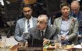 """SPGS Tanin na sednici Saveta Bezbednosti UN-a o Kosovu : """"Nema alternative dijalogu"""""""